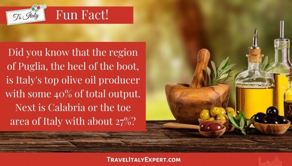 Fun Fact on Olive Oil